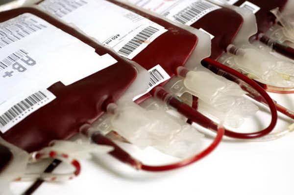 ถุงเลือด